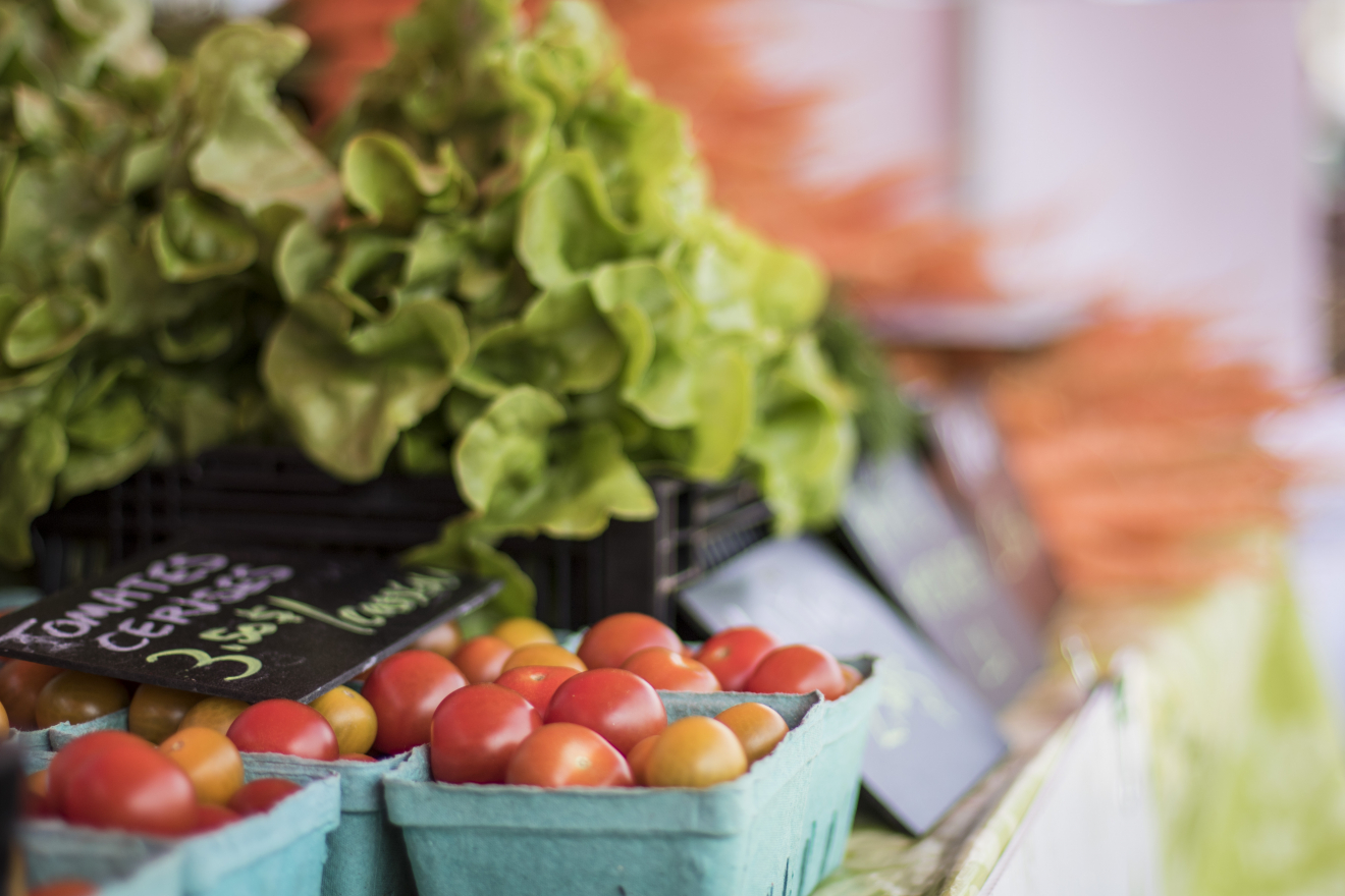 Bonne nouvelle : ouverture des marchés publics en Lotbinière!